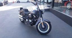Harley Davidson Fat Boy high